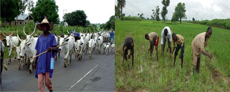 sw20_herdsmen-farmers